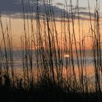 Siesta Key Named Best Beach in the U.S. by TripAdvisor