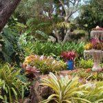 image gardens